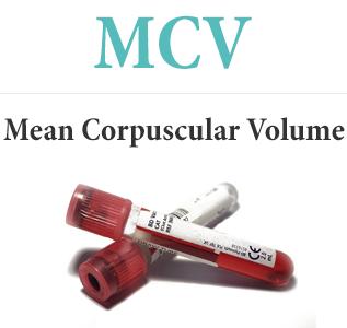 Cредний объем эритроцита (MCV)